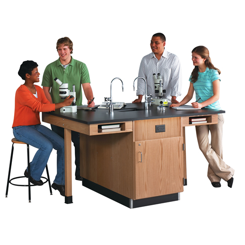 4 Student Science Lab Workstations