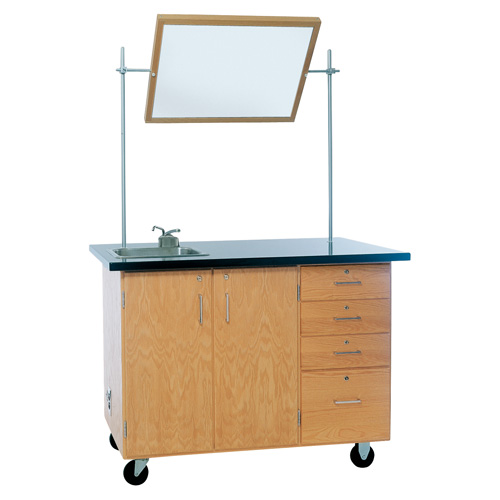 Deluxe Mobile Science Lab Workstation
