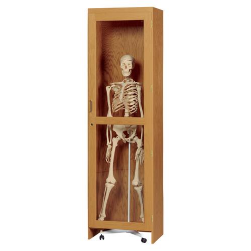 Locking Skeleton Cabinet