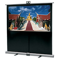 Da-Lite Theater-Lite Projection Screen