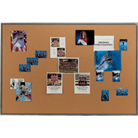 Stylish Powdercoat Framed Natural Cork Bulletin Boards