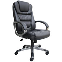 """NTR"" Executive LeatherPlus Chair"