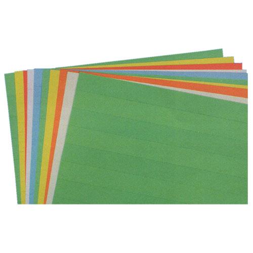 Perforated Full Sheet Data Card