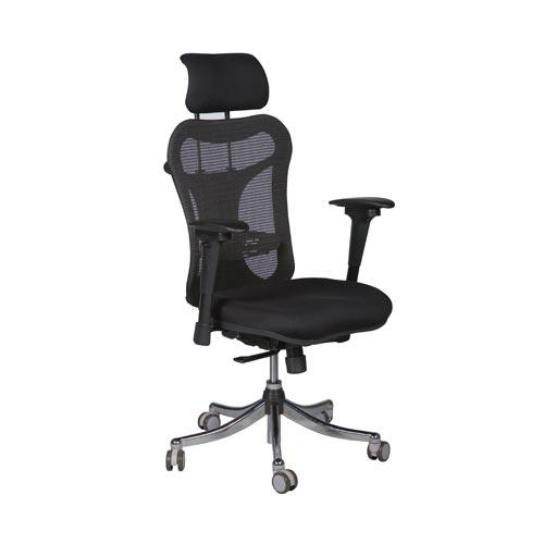 Ergo Ex Chair