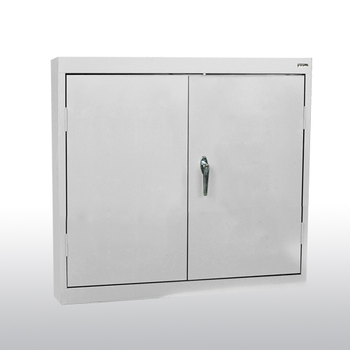 Solid Door Wall Cabinet