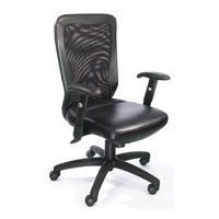 Boss Web Chair