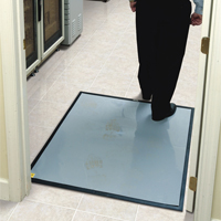 Clean Stride without Carpet