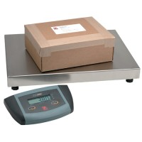 ES Series Bench Scales