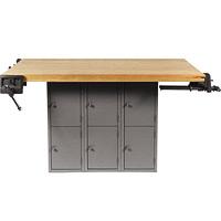 Metal Multi-Station Workbench