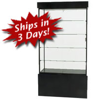 SFL902 Rectangular Wall Display Case